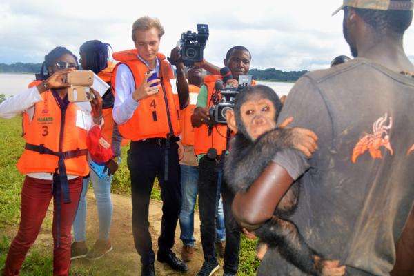 Tourisme: Une île aux chimpanzés installée au Cameroun.