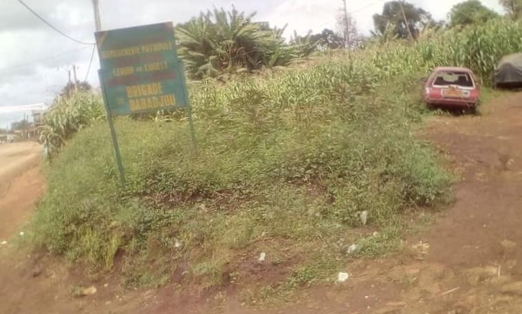 CAMEROUN : INSÉCURITÉ : LES SECESSIONISTES AUX PORTES DE L'OUEST.